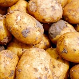 Potatoes 2